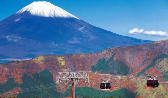 【温泉・グルメも満喫◎】意外?!箱根で日帰りデートプランおすすめしますっ♪