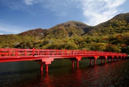 縁結びのための神社・パワースポット@関東*恋愛成就に効く!