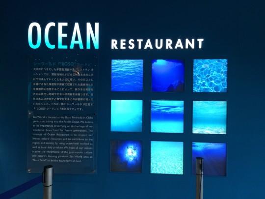夜の水族館,東京,関東,ナイトツアー,おすすめ,ナイトアクアリウム,画像