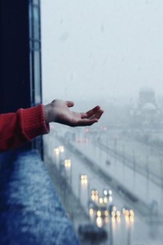 【雨の日が好きになる】インドアを楽しむおすすめ映画・音楽総まとめ