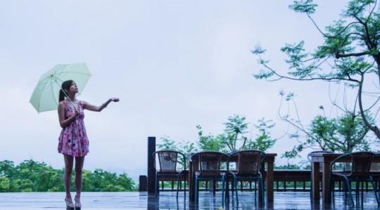 傘,メンズ,おすすめ,ブランド,手頃,お洒落,画像