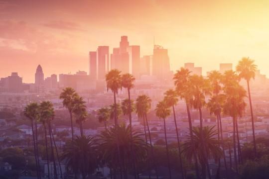 【アメリカ西海岸を感じる!】夏休み旅行のおすすめロサンゼルスをご紹介
