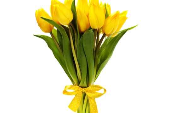 記念日ではなくてもOK「彼女が好きな色の花束」